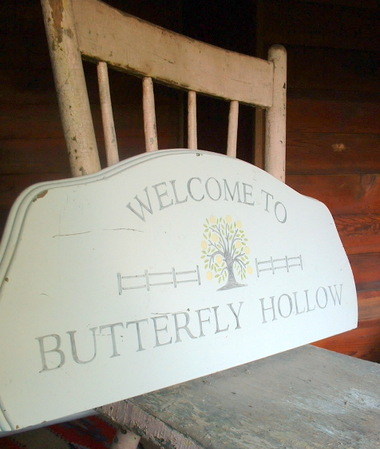 Butterfly_hollow